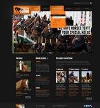 Animals & Pets PSD  Template 56497