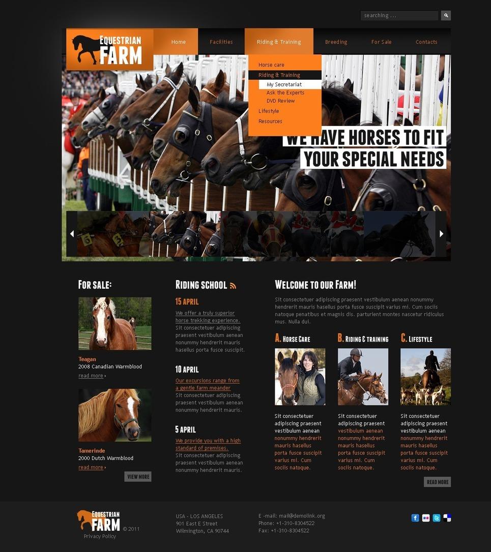 Horse PSD Template New Screenshots BIG