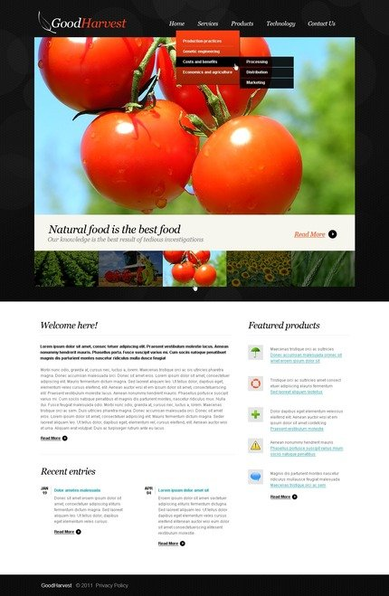 PSD макет сайта №56540