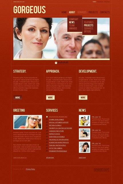 ADOBE Photoshop Template 56541 Home Page Screenshot