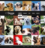 Animals & Pets PSD  Template 56553