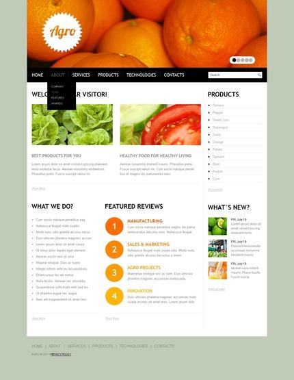 Website Template #56570
