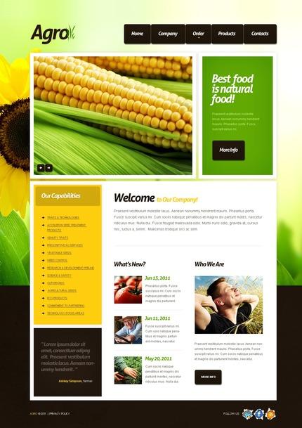 PSD макет сайта №56602