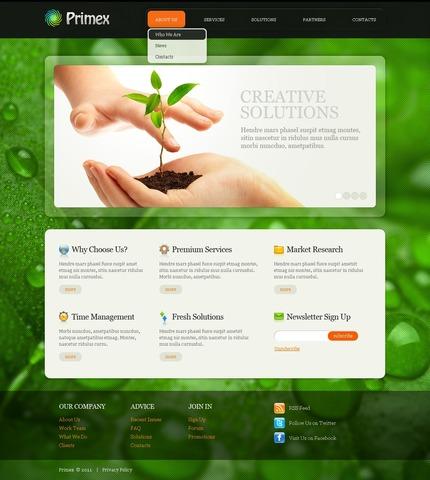 ADOBE Photoshop Template 56653 Home Page Screenshot