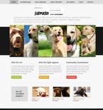 Animals & Pets PSD  Template 56720