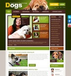 Animals & Pets PSD  Template 56764