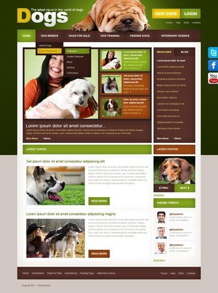 PSD макет сайта №56764