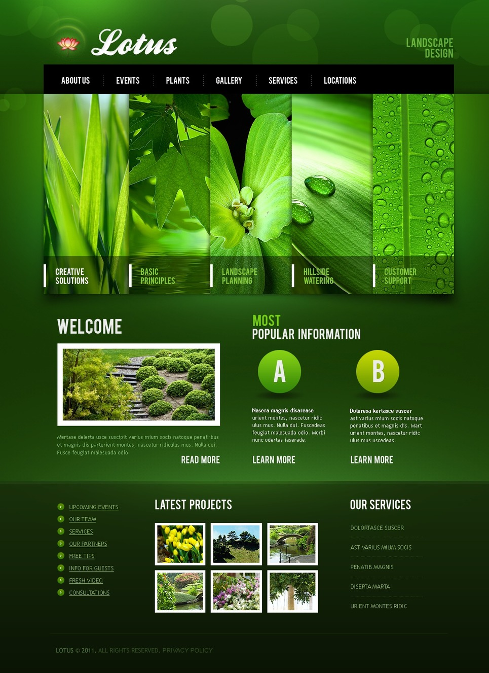 Plantilla PSD #56721 para Sitio de Diseño de paisaje