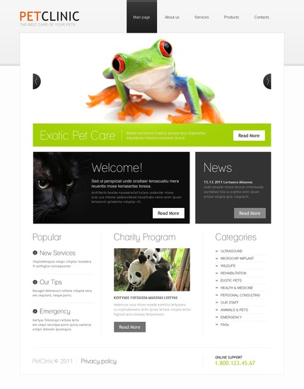 ADOBE Photoshop Template 56807 Home Page Screenshot