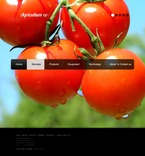 Agriculture PSD  Template 56812