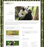 Animals & Pets PSD  Template 56947