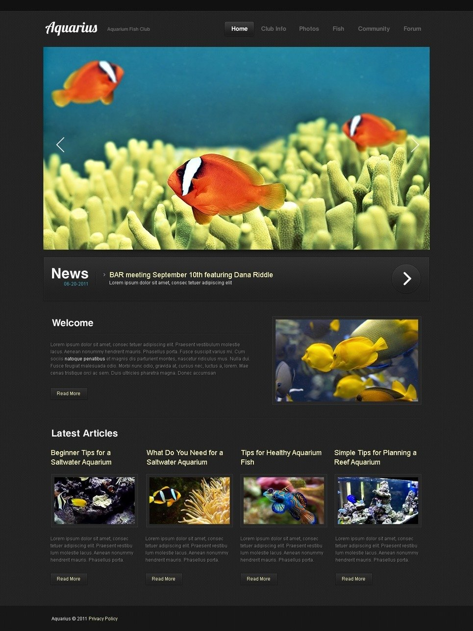 Fish PSD Template New Screenshots BIG