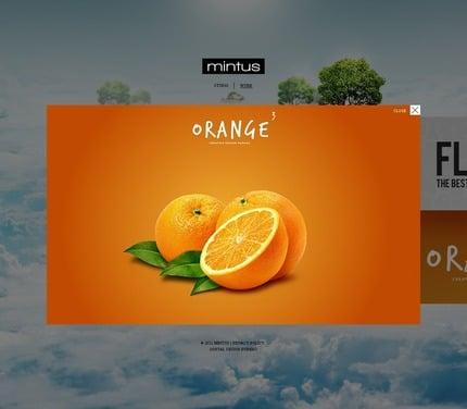ADOBE Photoshop Template 57017 Home Page Screenshot