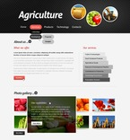 Agriculture PSD  Template 57156