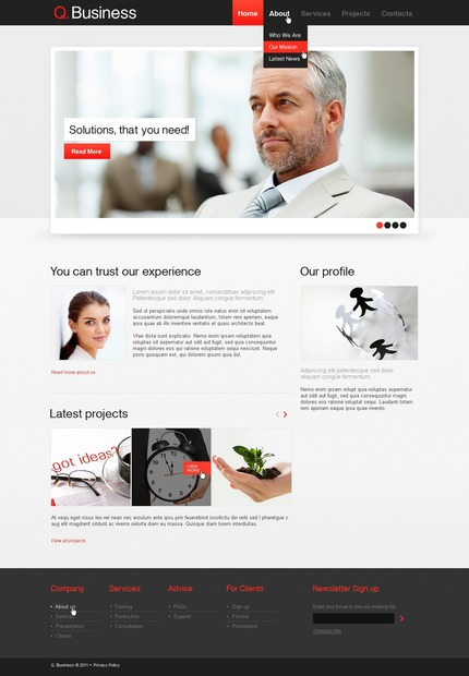 ADOBE Photoshop Template 57179 Home Page Screenshot