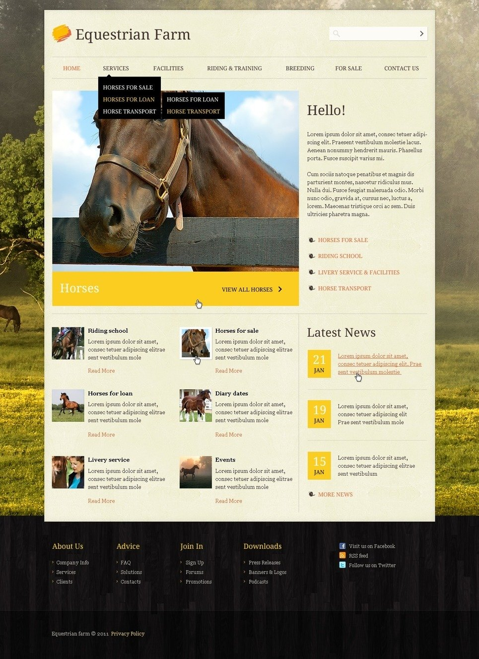 Horse PSD Template New Screenshots BIG