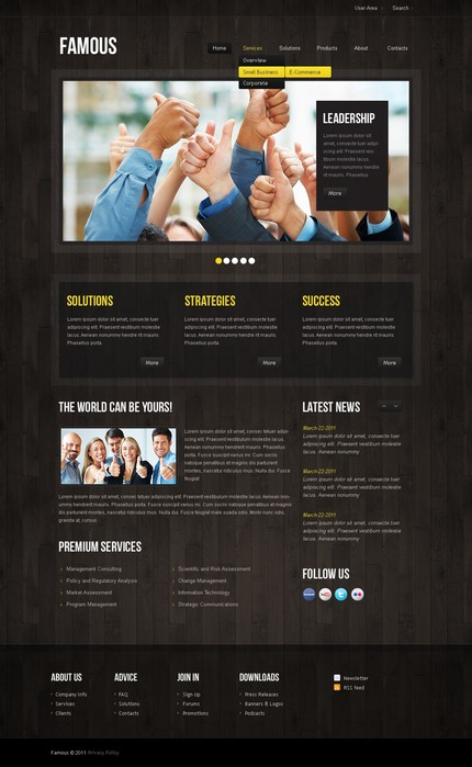 ADOBE Photoshop Template 57232 Home Page Screenshot