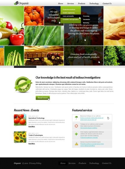 ADOBE Photoshop Template 57242 Home Page Screenshot