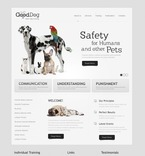 Animals & Pets PSD  Template 57255