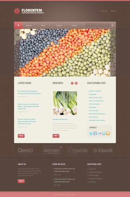 ADOBE Photoshop Template 57366 Home Page Screenshot