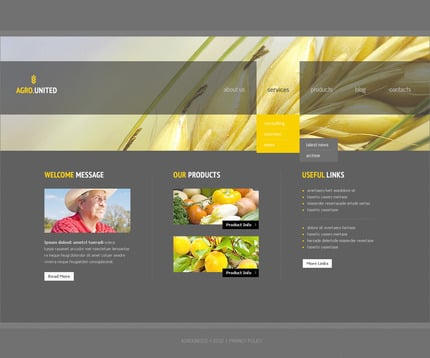 ADOBE Photoshop Template 57413 Home Page Screenshot