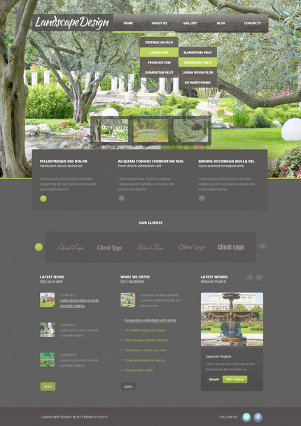 ADOBE Photoshop Template 57485 Home Page Screenshot