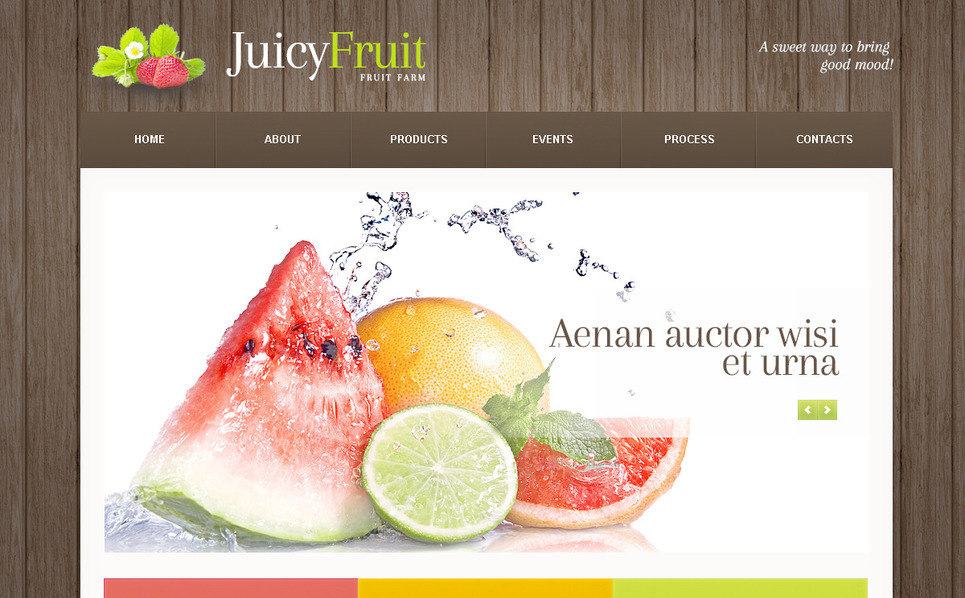 Modèle PSD  pour site de fruits New Screenshots BIG