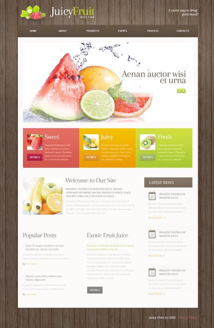 ADOBE Photoshop Template 57508 Home Page Screenshot