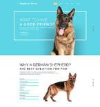 Animals & Pets Website  Template 57575