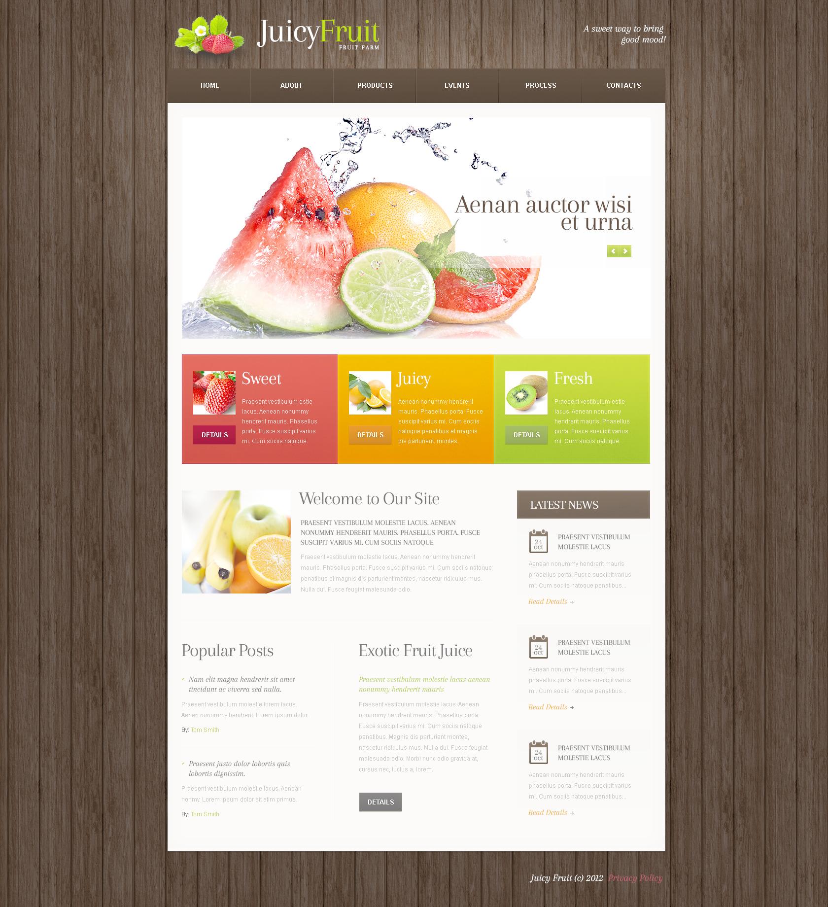 Gyümölcsök témakörű PSD sablon 57508 - képernyőkép