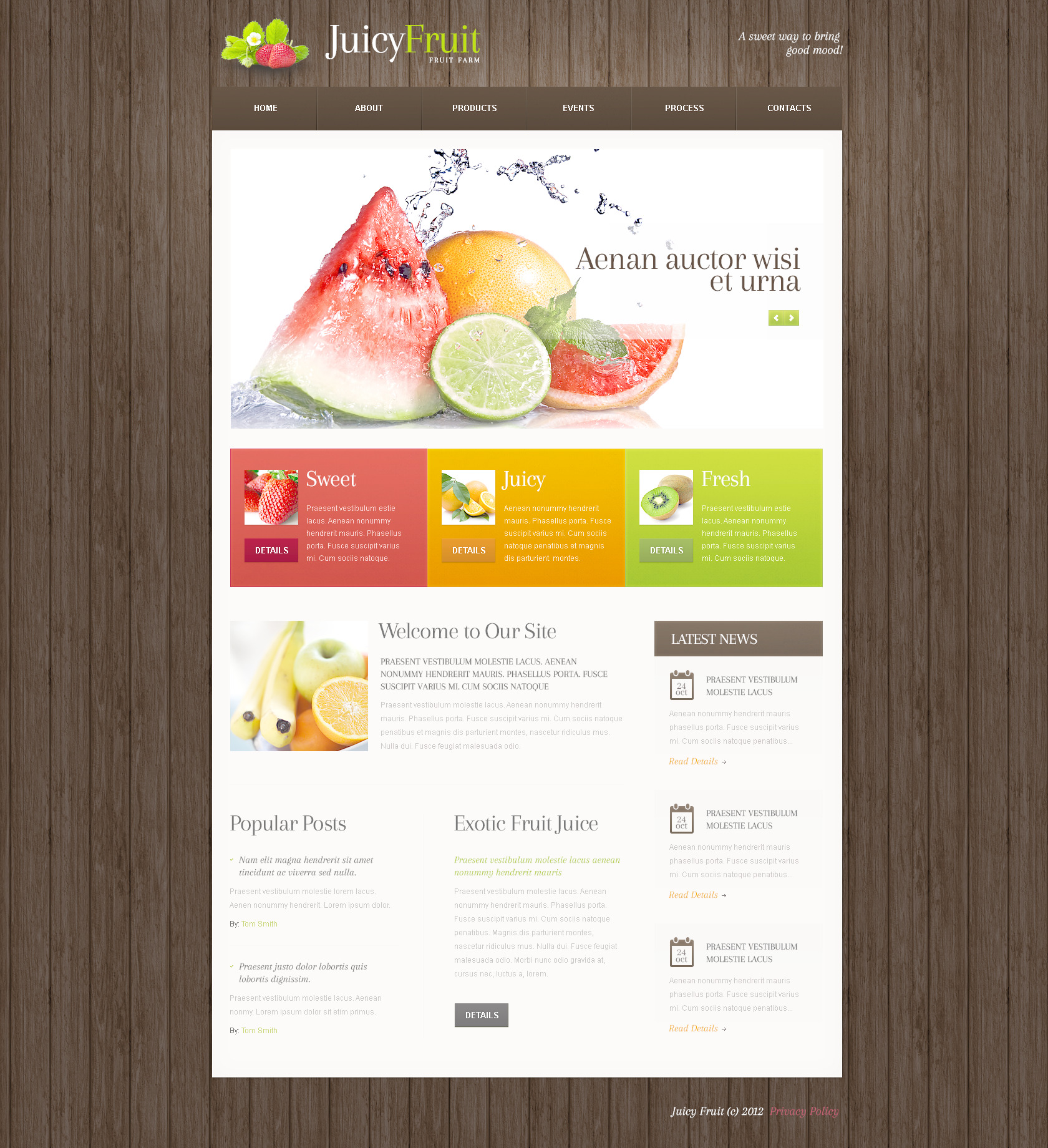 PSD шаблон на тему фрукти №57508 - скріншот
