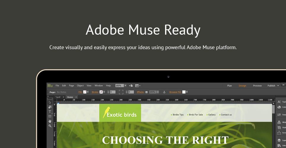 Exotic Birds Muse Template