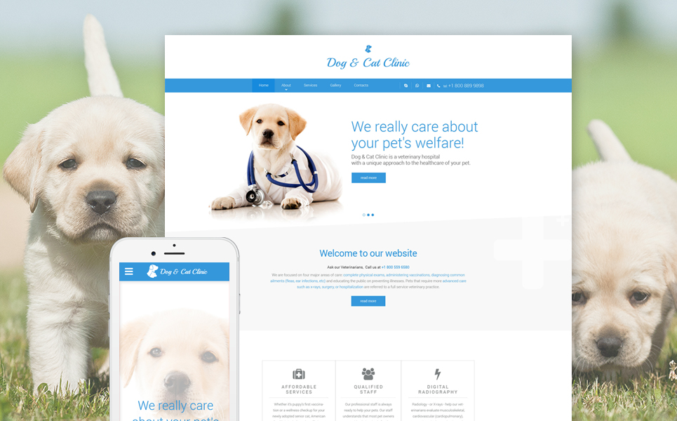Dog  Cat Clinic template illustration image