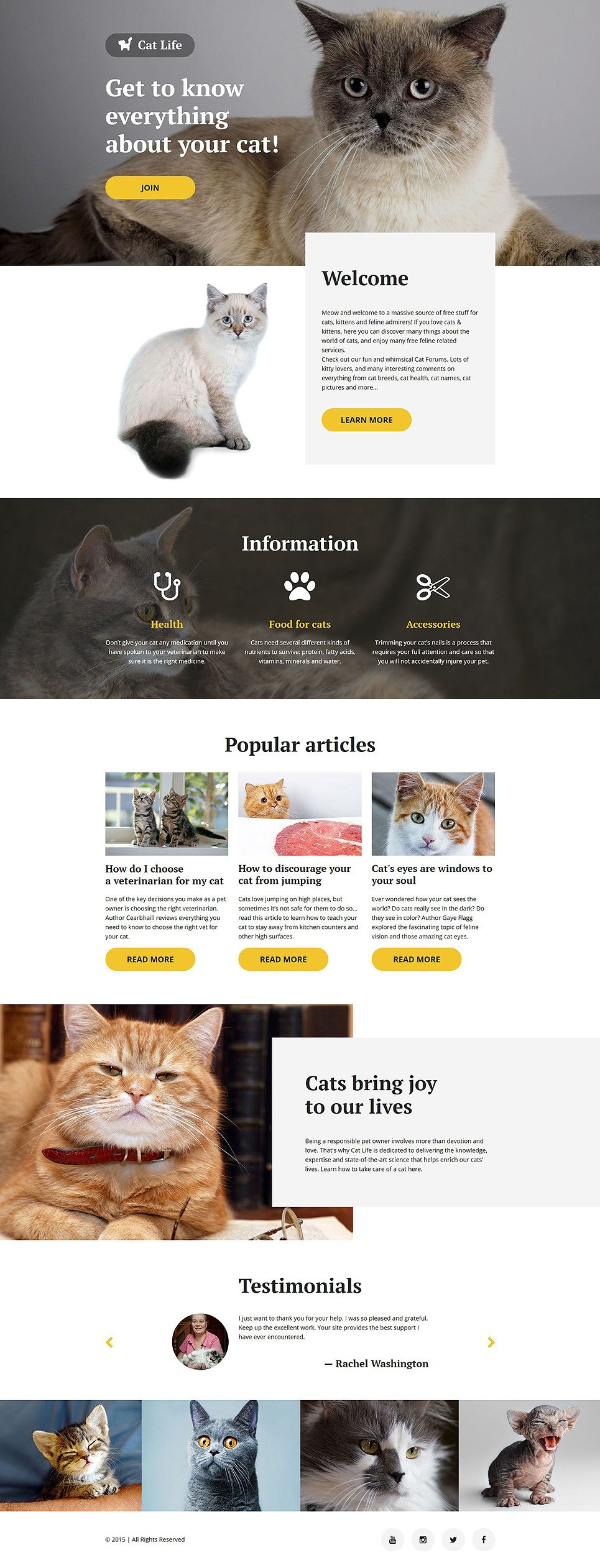 Cat Responsive Landing Page Template New Screenshots BIG