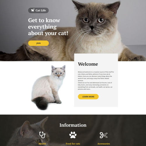 Cat Life - Responsive Landing Page Template