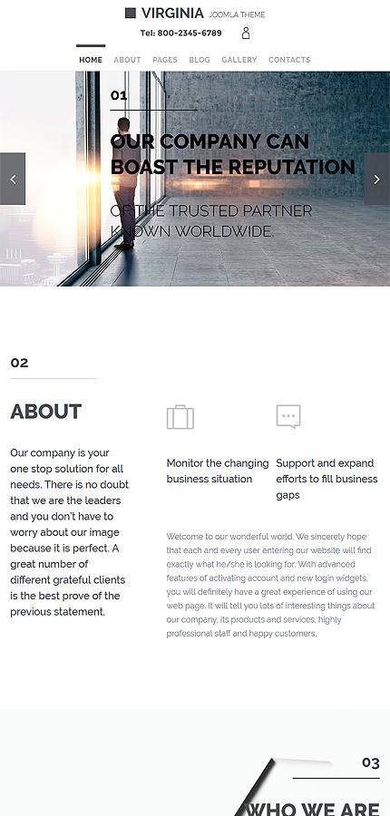 Joomla Theme/Template 57762 Main Page Screenshot