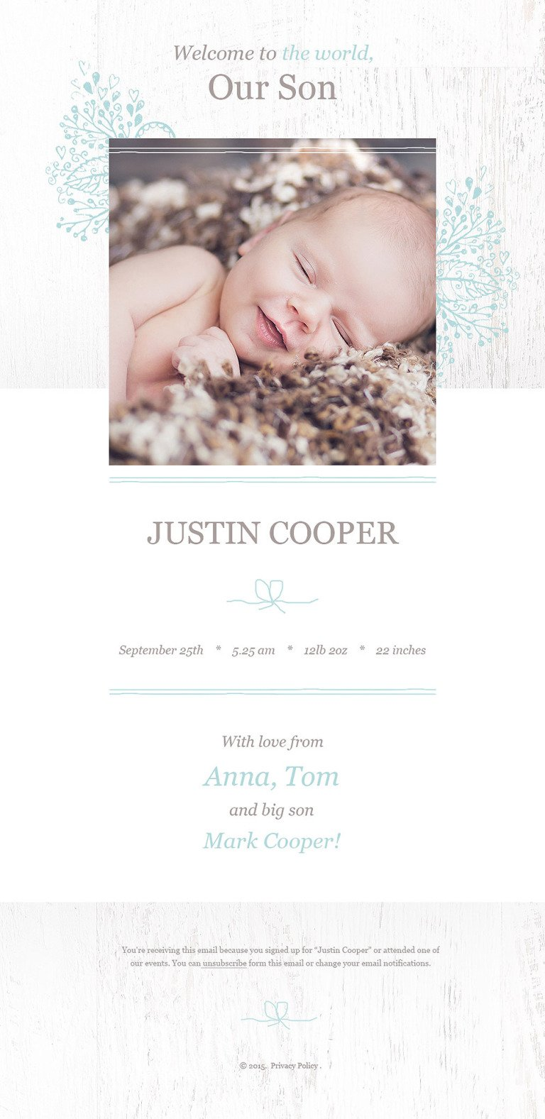 Newborn Responsive Newsletter Template New Screenshots BIG