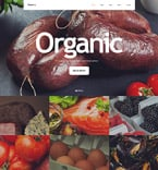 Food & Drink Website  Template 57844