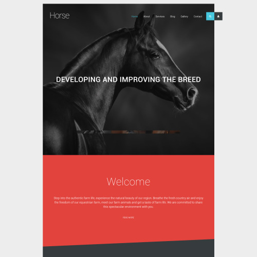 Horse - Joomla! Template based on Bootstrap
