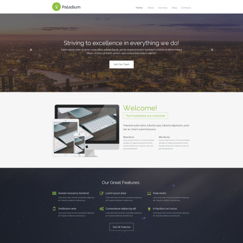 Paladium - Website Template based on Bootstrap