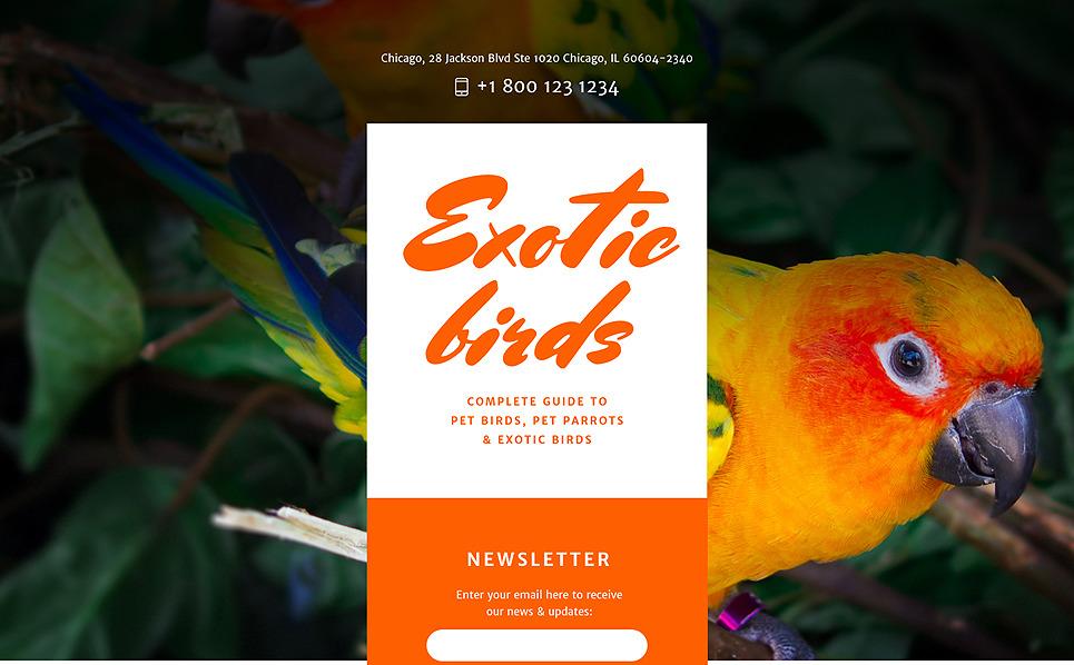 Responsywny szablon Landing Page #58015 na temat: ptaki New Screenshots BIG