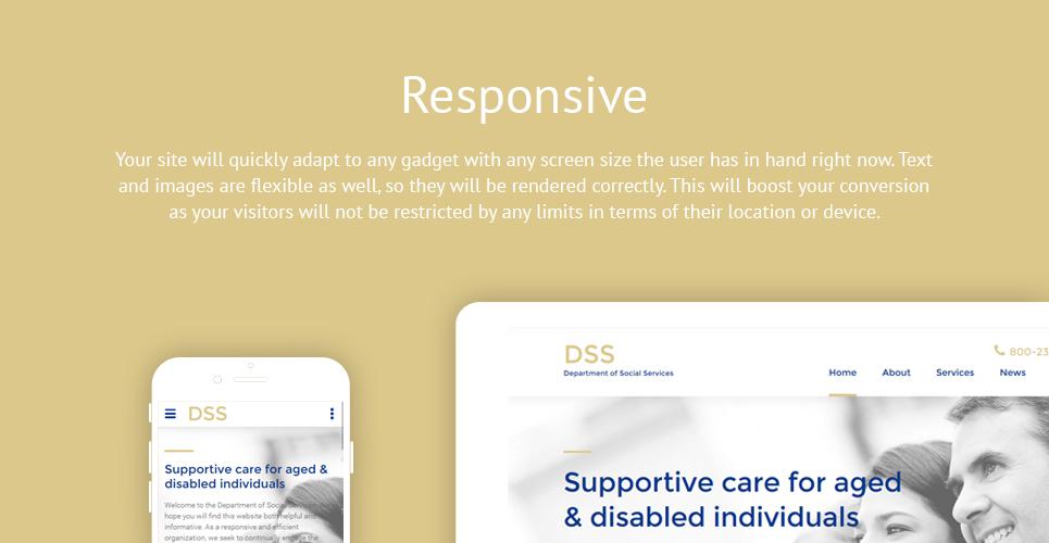 Dss Department  Responsive Website Template