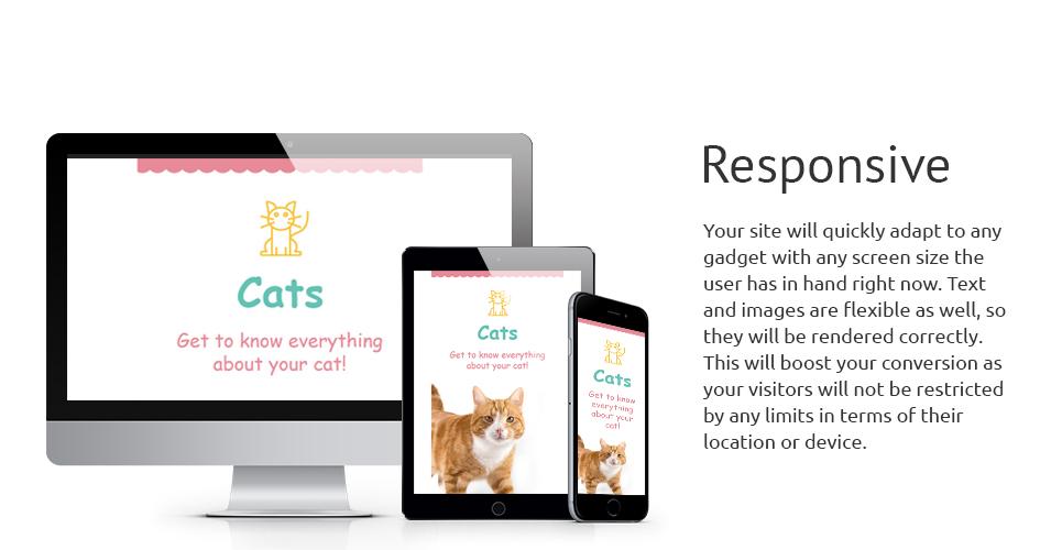 Cat Responsive Newsletter Template