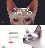 Animals & Pets Website  Template 58052