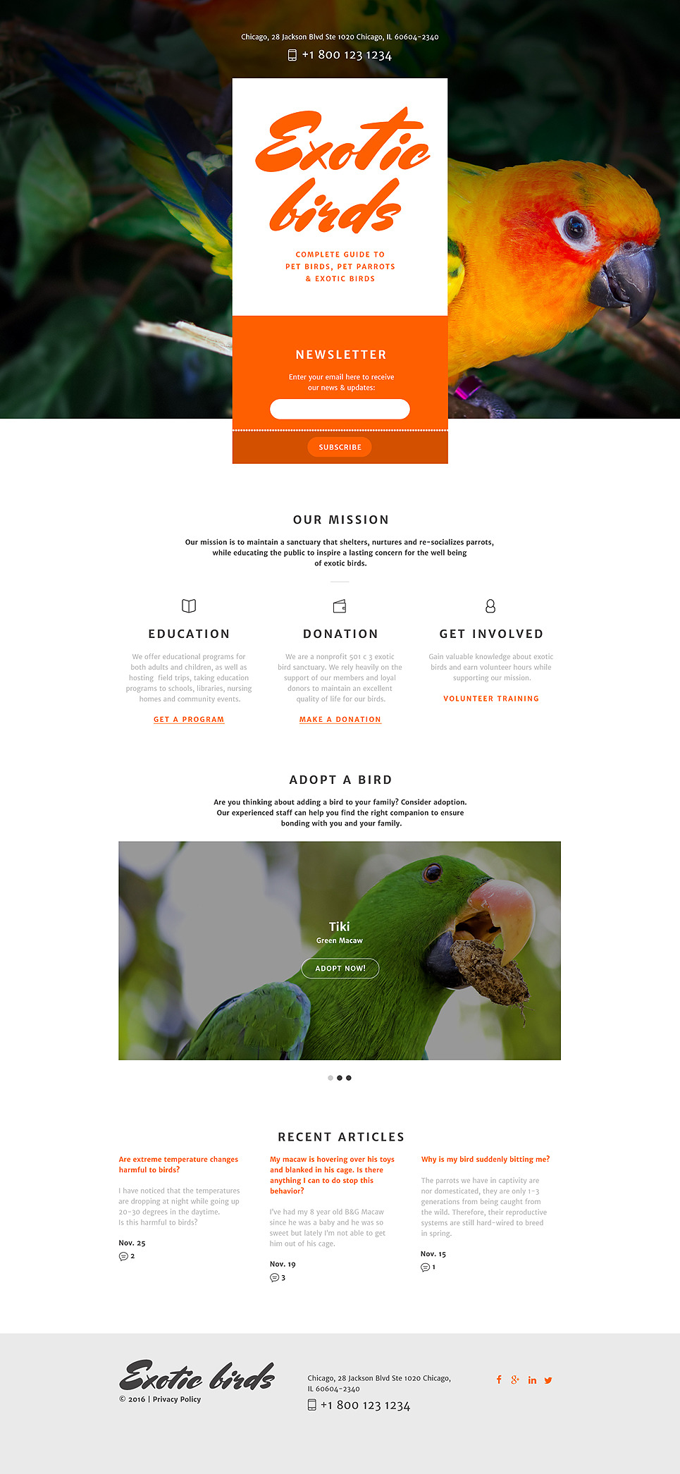 Birds Responsive Landing Page Template New Screenshots BIG
