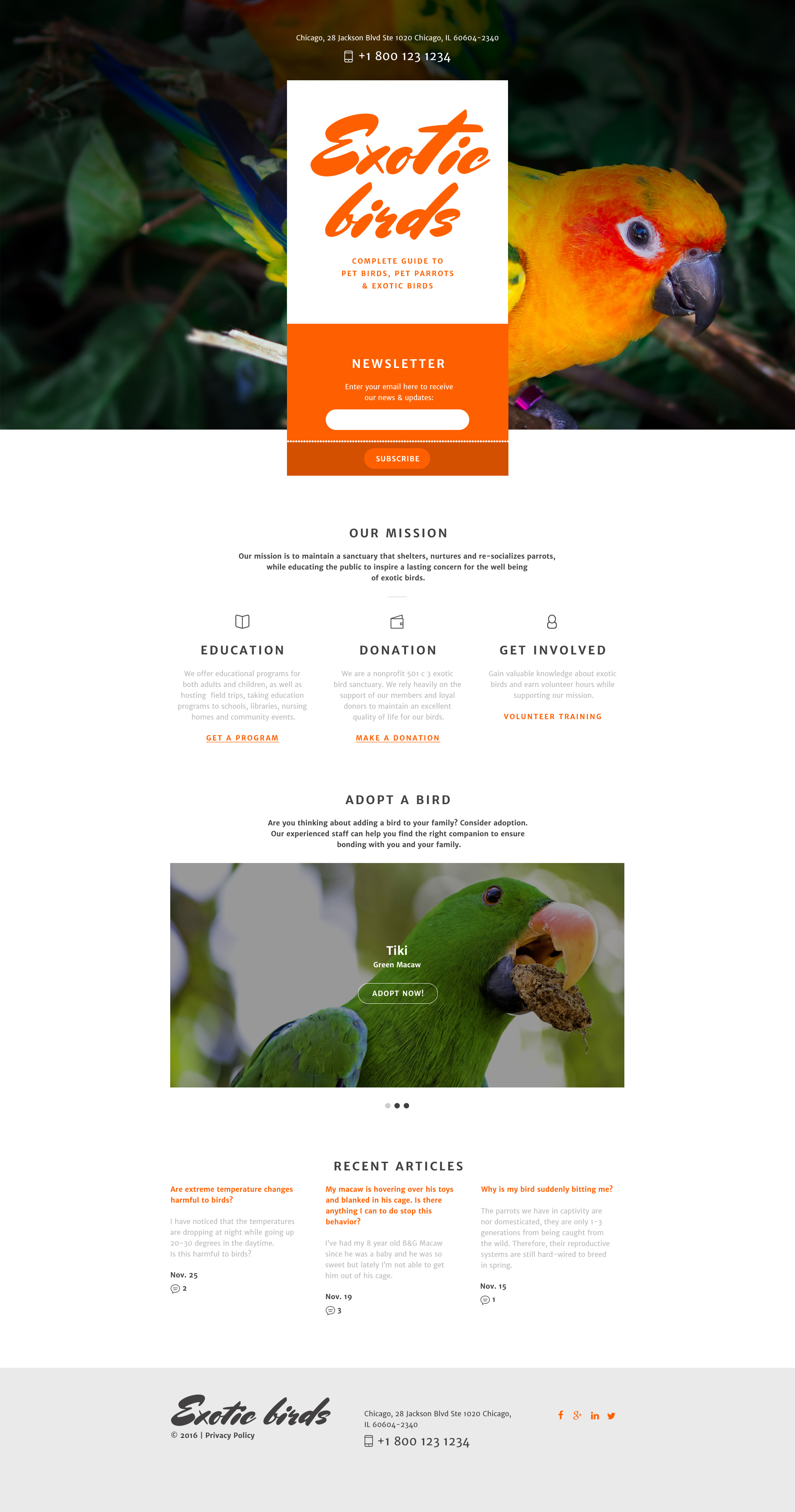 Birds Responsive Landing Page Template