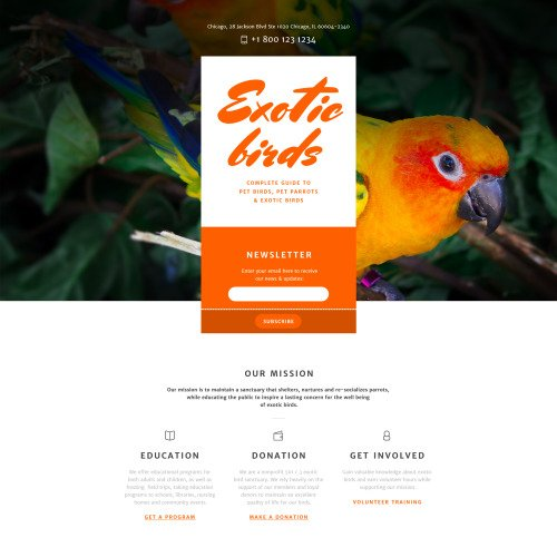 Exotic Birds - Responsive Landing Page Template