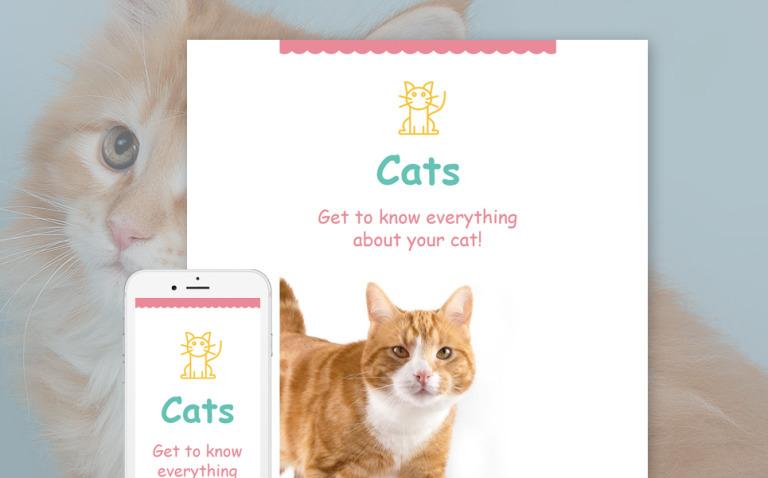 Cat Responsive Newsletter Template New Screenshots BIG