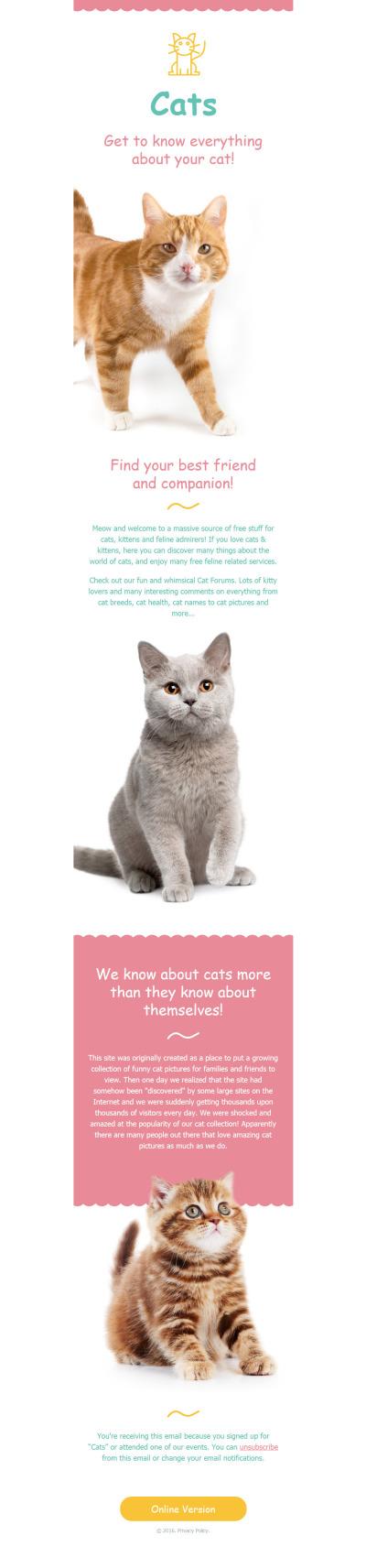 Responsive Newsletter Vorlage für Katze
