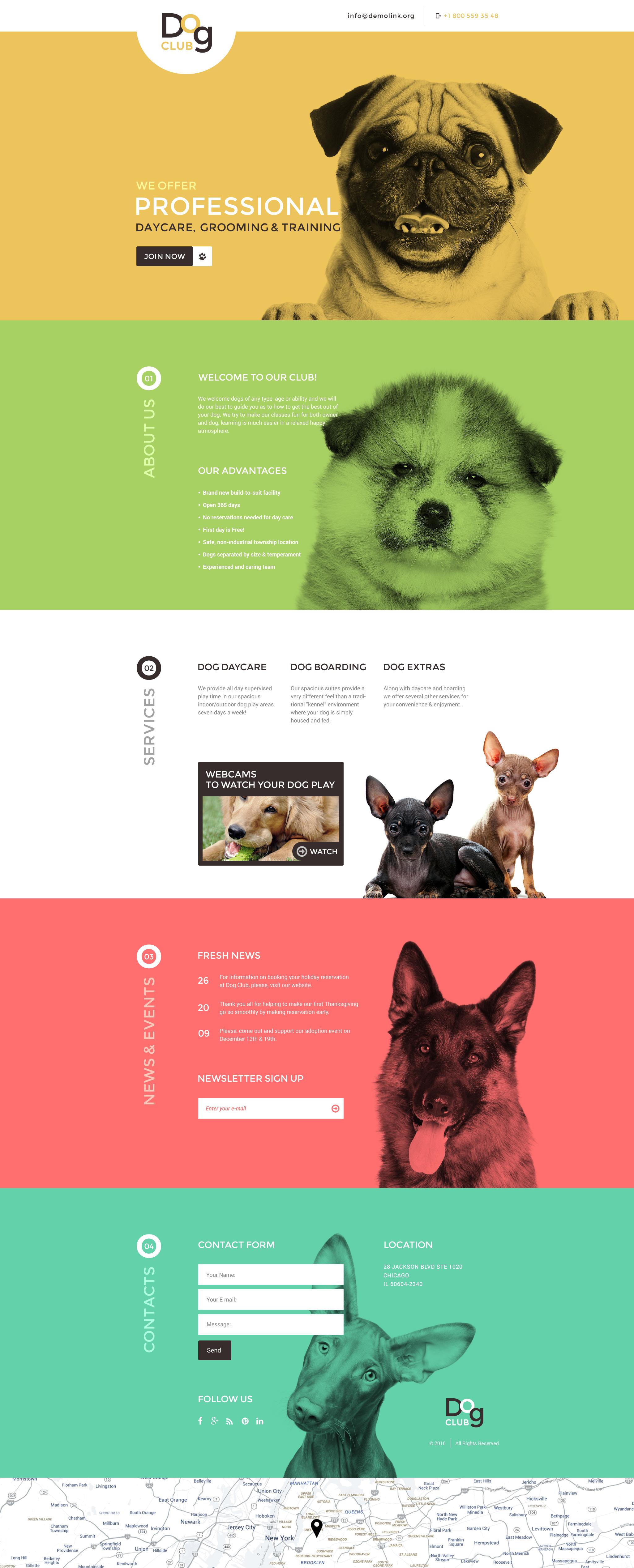 Reszponzív Kutyák témakörű Nyítóoldal sablon 58095